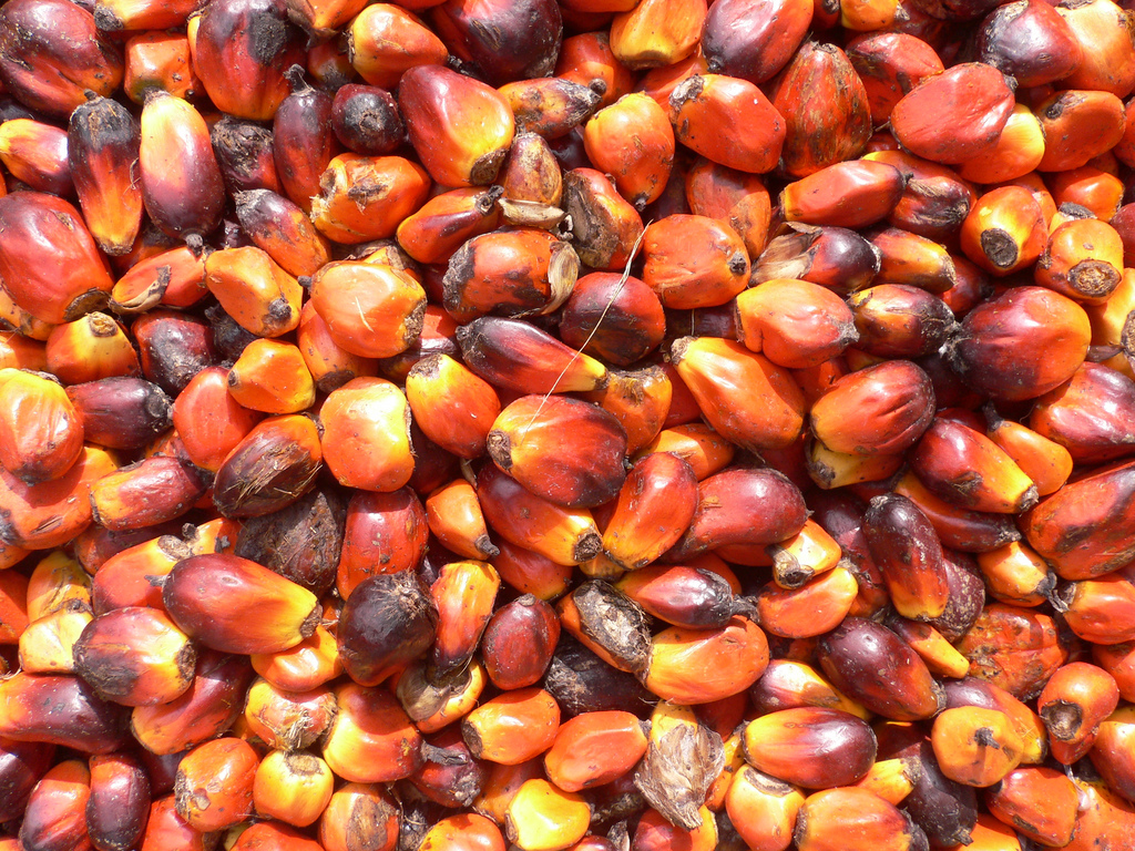 Palm oil and challenges to Indonesia's plantation commodities' sustainability
